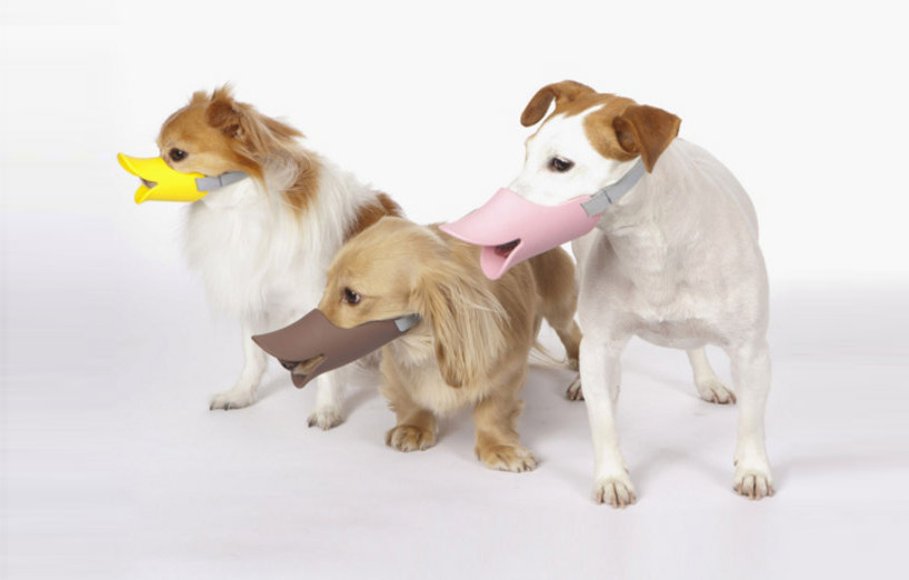 Duck billed anti-bite Mask for Dog