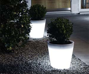 LED Light up Planter